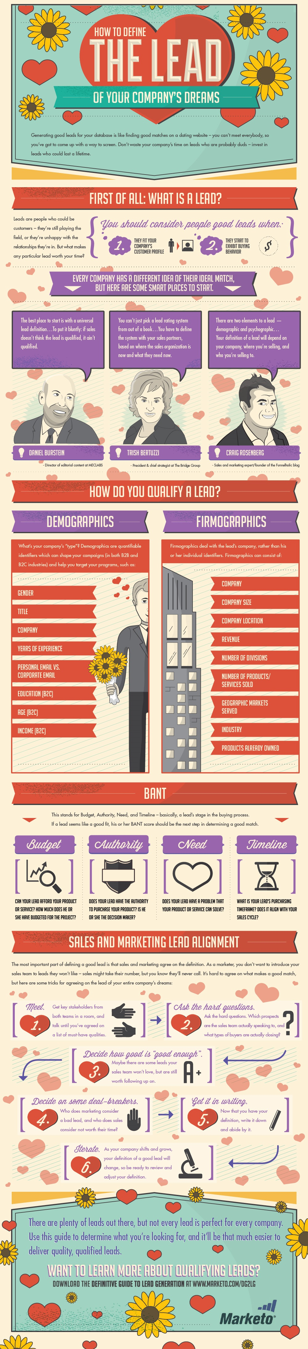 How to Define the Lead of Your Companys Dreams Infographic