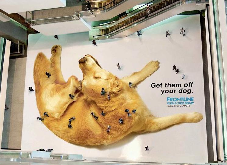 frontline flea and tick ad