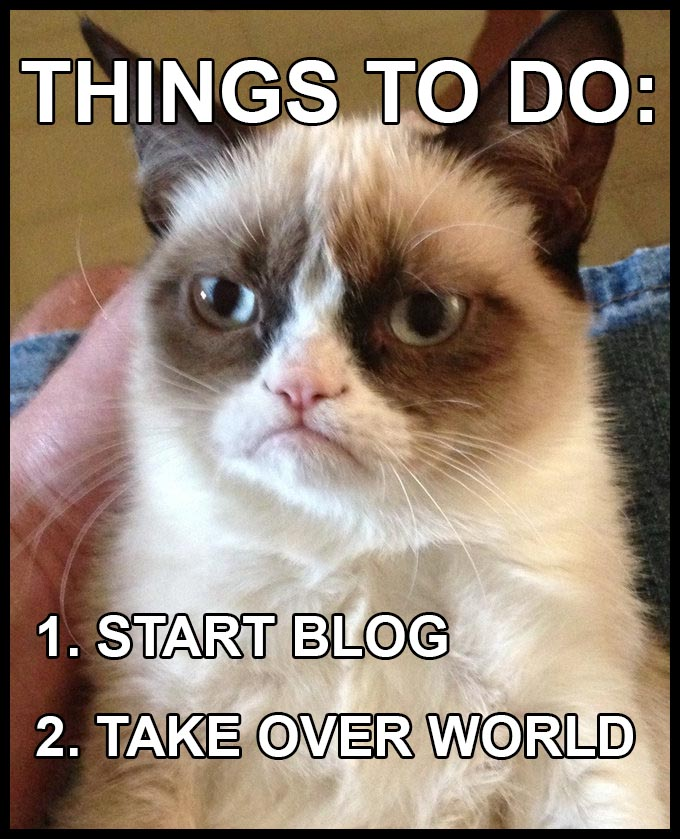 Grumpy Cat Blog