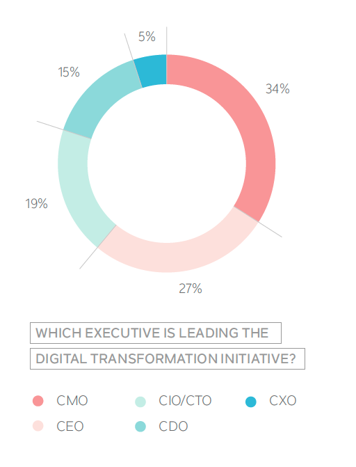 Which Executive Leads Digital Transformation