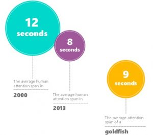 Attention Span Infographic