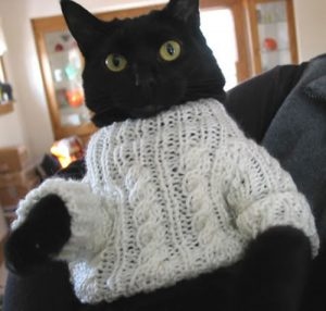 Black Cat in White Cable Knit Sweater