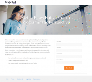 BrightRoll Example